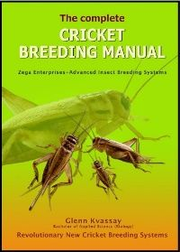 Breeding Crickets Guide