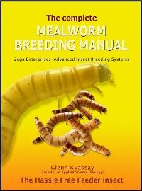 Breeding Mealworms Guide