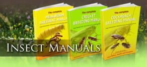 Feeder Insects Manuals