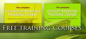 Feeder Insects Training Courses