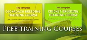Free Feeder Insect Training Courses